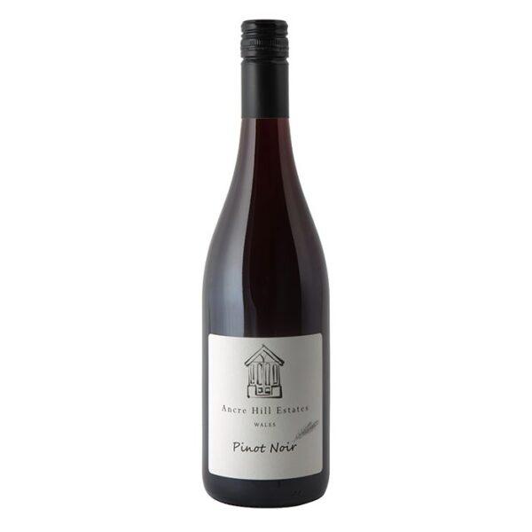 Ancre Hill P Noir 600x600 - Ancre Hill, Pinot Noir, Monmouth 2018 Wales Biodynamic